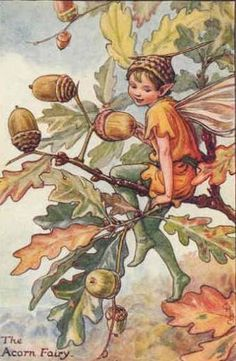 Cicely M. Barker Flower Fairies of the Autumn