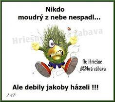 Nikto múdry z neba nespadol. Haha, Funny Pictures, Funny Memes, Writing, Sayings, Dogs, Pictures, Fanny Pics, Lyrics