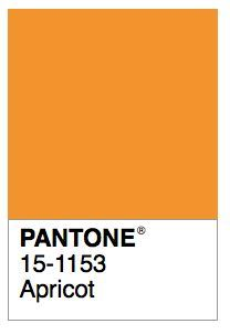 Image result for apricot color Pallette, Colour Pallete, Color Schemes, Pantone Colour Palettes, Pantone Color, Colour Board, Color Box, Orange Pantone, Vintage Colour Palette