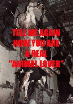 Animal lover?
