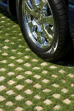 Walkable ground cover