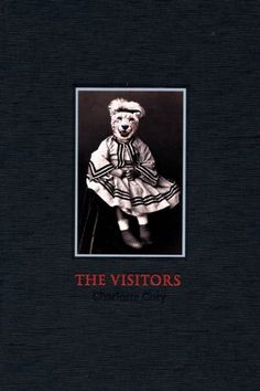 The Visitors by Charlotte Cory, http://www.amazon.co.uk/dp/190458750X/ref=cm_sw_r_pi_dp_qM9ysb10G91HM