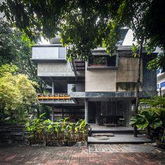 Mango Tree House / Volume Matrix Studio