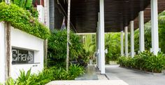 The-Chava-Resort-Entrance Chocolate Factory, Entrance, Pergola, Wanderlust, Outdoor Structures, Luxury, Entryway, Door Entry, Outdoor Pergola
