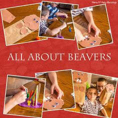 Some great learning ideas for teaching kids all about beavers.