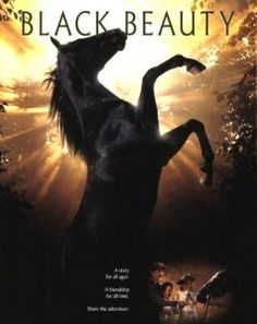 Black Beauty. I've seen the movie and read the book about a hundred times each. Probably my all time favorite movie. My mother brainwashed us at a young age to adore horse movies, (she rarely bought anything else) and I'm glad she did!