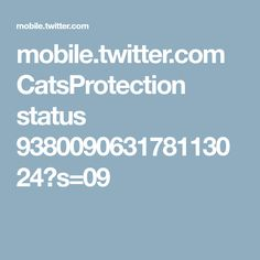 mobile.twitter.com CatsProtection status 938009063178113024?s=09
