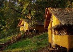 Jungle Lodge (Old Magazine House) - Ganeshgudi /Karnataka