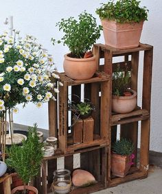 von Kundin Marion Foto von Kundin Marion Foto von Kundin Marion The post Foto von Kundin Marion appeared first on Balkon ideen.Foto von Kundin Marion Foto von Kundin Marion The post Foto von Kundin Marion appeared first on Balkon ideen. Old Boxes, Wooden Boxes, Wooden Crates Garden, Wooden Crate Shelves, Garden Inspiration, Home Deco, Indoor Plants, Potted Plants, Patio Plants