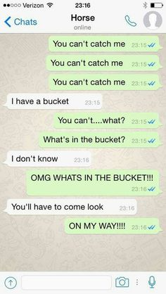 If horses could text...