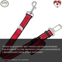 What does our friend Terence has to say about our seat belt for large dogs? Click the link in our bio to get yours. #seatbelt #dogseatbelt #dogs #dogstagram #dogsofinstagram #puppiesofinstagram #puppystagrams #puppycraze #puppies #petsloversclub #instadog #instadogs #love #dogphotography #cats #catseatbelt #catstagram #petstagram #dailydog #dailycat #dogoftheday #catoftheday