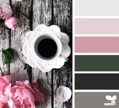 Color sip | design seeds | Bloglovin'