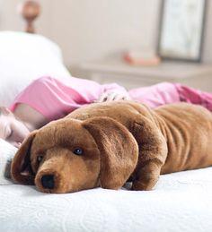 Dachshund Body Pillow- basically my dog minus the barking @amy_rieves