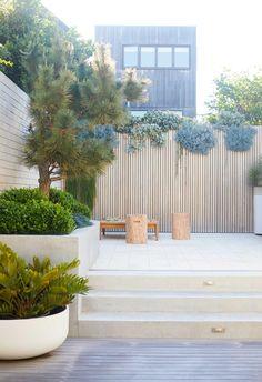 Garden Spaces, Balcony Garden, Garden Beds, Outdoor Spaces, Outdoor Living, Outdoor Decor, Outdoor Furniture, Dwarf Mondo Grass, Alfresco Area