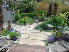 irregular flagstone walkway w/ ground cover growing in the joints