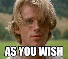 as you wish - princess bride