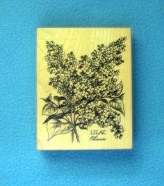 PSX  LILAC BOTANICAL Rubber Stamp FLOWERS K-1299 (1999) #PSX