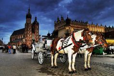 favorit place, spots, fairies, poland polska, krakow, fairy tales, grandparents, poland travel, amaz thing