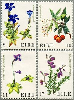 Suitcase Stickers, Love Mail, Postage Stamp Art, Flower Stamp, My Themes, Vintage Stamps, Mail Art, Stamp Collecting, Natural History