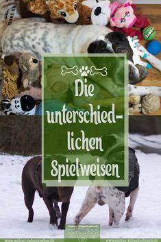 Hart oder herzlich? - Spielen bei Hunden » Malous Rabaukenbande - ehrlicher Blog über Hunde & Katzen im Alltag & Beruf | #hund #spiele #hunde