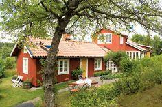 """ᏤᏘᖇᎦᏘMT UTᏰᎽᎶᎶT ᎦKÄᖇᎶÅᖇᎠᎦTᎧᖇᎮ: Det gamla körsbärsträdet breder ut sin krona över uteplatsen. Huset har nytt enkupigt lertegel, Vittinge. Fönster med spröjs och dörrar, Allmoge Snickerier. Längan har ny locklistpanel med Falu rödfärg original. Utemöbler, Guteform. För Inger och Göran var det viktigt att behålla det gamla huset som utgångspunkt när de byggde den nya delen.  """"Det var fler som undrade varför vi inte bara satt en dynamitgubbe på torpet och byggde nytt från början. Och då gick…"""