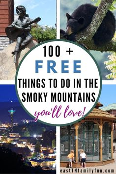 Gatlinburg Vacation, Tennessee Vacation, Vacation Trips, Gatlinburg Tennessee, Family Vacations, Vacation Ideas, Forest Resort, Scenic Train Rides, Christmas Travel