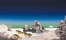 Roger Dean -Tales From Topographic Oceans (Yes album cover)