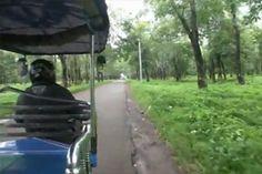 Video 16 – Plantaciones de caucho en Kompong Cham