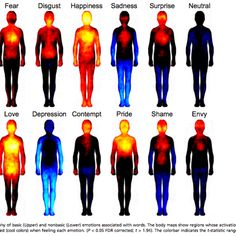 This is What Happens to Your Body When You're In Love ... And Angry ... And Sad.