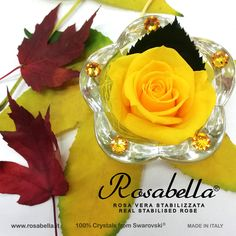 Foliage d'autunno 🍂🍃🍁 #foliage #autunno #rosabella #rosastabilizzata #rosagioiello Swarovski, Crystals, Pink, Crystal, Crystals Minerals