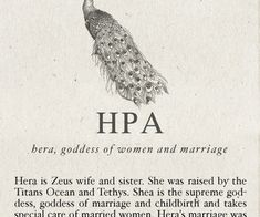 Greek Gods Hera
