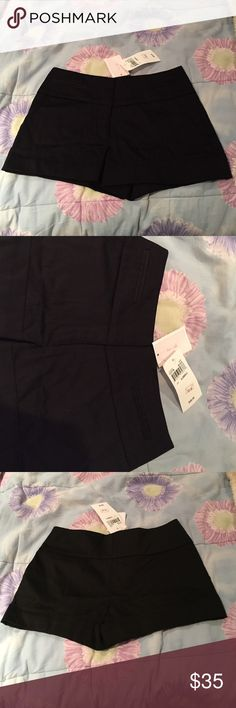 NWT Black Business Shorts Brand new black business shorts, fake pockets in the front and folds at the bottom of the legs, great with tights! Purchased from Lord and Taylor love...ady Shorts