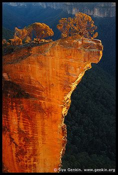 Sunrise at Hanging Rock, Baltzer Lookout, Blackheath, Blue Mountains, NSW… Beautiful World, Beautiful Places, Blue Mountains Australia, Formations Rocheuses, Australia Travel, Melbourne Australia, Tasmania, Beautiful Landscapes, Wonders Of The World