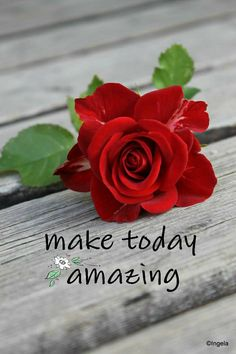 Good Afternoon Quotes, Good Morning Inspirational Quotes, Good Morning Quotes, Good Morning Flowers, Good Morning Images, Fb Games, Love You Images, Islamic Images, Good Morning Greetings