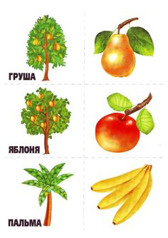 memory11 Autumn Activities For Kids, Preschool Activities, Learn Russian, Russian Language, Montessori Materials, Smoothie Bowl, Speech Therapy, Fruits And Vegetables, Asian Recipes