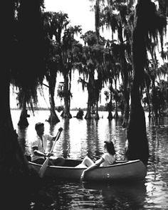 Silver Springs, 1953