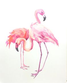 Flamingos original watercolor painting 14 x 11 in two birds art, bird wall art by ORIGINALONLY on Etsy
