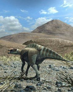 *Huehuecanauthlus tiquichensis, hadrosaurine dinosaur from the Late Cretaceous of Mexico. Art by Román García Mora.