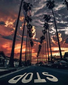Sunset in Los Angeles California Photography by by aroundtheworldpix Tumblr Wallpaper, City Wallpaper, Nature Wallpaper, Wallpaper Backgrounds, Sunset Wallpaper, Summer Backgrounds, Phone Backgrounds, Phone Wallpapers, Aesthetic Backgrounds