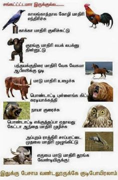 Tamil Funny Memes, Tamil Comedy Memes, Comedy Quotes, Literature Quotes, Tamil Motivational Quotes, Tamil Love Quotes, Very Funny Jokes, Crazy Funny Memes, Funny Dialogues