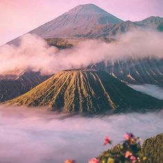Crisp pastel sunrise at Mount Bromo, Indonesia - by Wahya Mahendra Beautiful World, Beautiful Places, Destinations, Wanderlust, Landscape Illustration, Illustration Art, Adventure Is Out There, Beautiful Landscapes, Mother Nature
