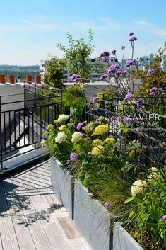 terrasse sur les toits de Paris Rooftop Terrace Design, Rooftop Deck, Rooftop Garden, Balcony Garden, Backyard Garden Landscape, Garden Trees, Back Gardens, Outdoor Gardens, Paris Rooftops