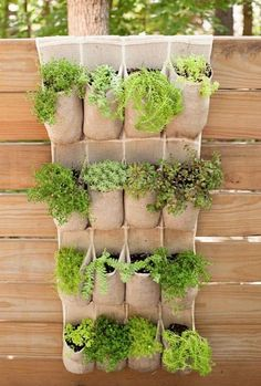 15 Unique and Beautiful Container Garden Ideas-Herb Garden-Hanging herb garden-small space gardening # container Gardening 15 Unique and Beautiful Container Garden Ideas - Sanctuary Home Decor Fence Planters, Vertical Planter, Vertical Gardens, Planter Garden, Planter Ideas, Diy Vertical Garden, Hanging Planters, Herbs Garden, Shoe Storage Vertical Garden