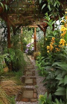 Pathway's concrete block+brick steps with water catching surround gravel, path covering pergola & lush vegetation details