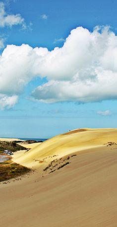 Golden sand dunes, Ninety mile beach, Northland, North Island, NZ New Zealand Beach, New Zealand Travel, The Beautiful Country, Beautiful World, Places To Travel, Places To Go, New Zealand Holidays, Sydney Beaches, New Zealand Landscape
