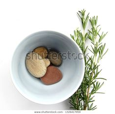 Find Pebbles Bowl Rosemary stock images in HD and millions of other royalty-free stock photos, illustrations and vectors in the Shutterstock collection. Thousands of new, high-quality pictures added every day.
