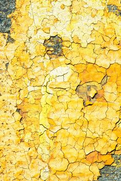 Yellow / Area of interest / Michael Chase // Reckless Texture Jaune Orange, Texture Photography, Peeling Paint, Yellow Submarine, Mellow Yellow, Grey Yellow, Bright Yellow, Black White, Shades Of Yellow
