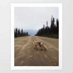 Road Fox Art Print by Kevin Russ - $20.00