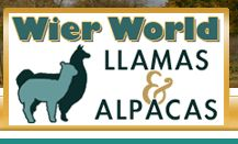 Wier World Llamas & Alpacas Llama Arts, Llama Alpaca, Alpacas, Art Logo, World, Logos, Logo, The World, Earth