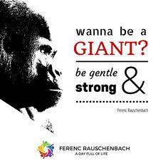Gorillas... sanfte Riesen.